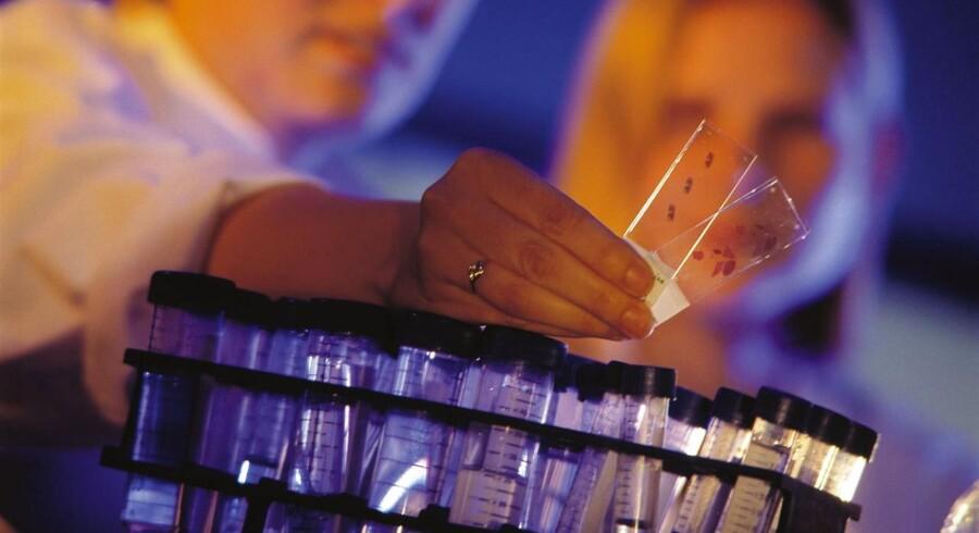 Et middel til behandling af kræft i plasmacellerne i blodet viser positive resultater i test for Genmab, men det kunne ikke ses på aktiekursen.
