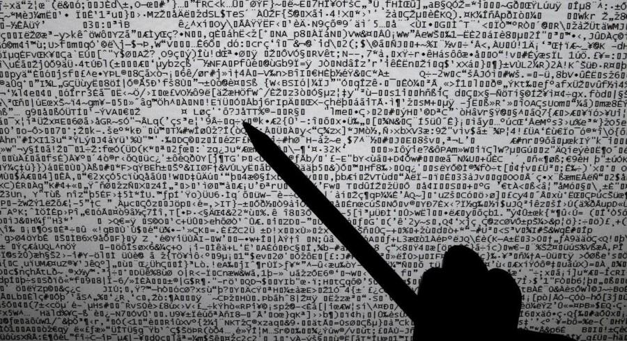 Hackerangrebene mod danske netsider tog af i august. Arkivfoto: Claus Bech, Scanpix