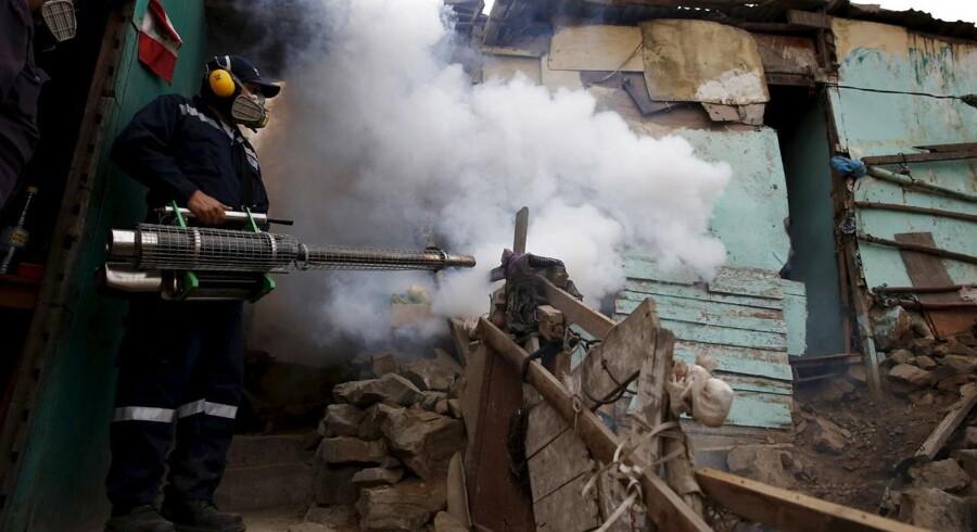 Zikavirussen er en trussel for hele verden, siger WHO