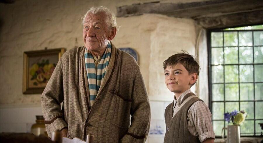 Ian McKellen som en aldrende og stadig mere bims Sherlock Holmes. Foto fra »Mr. Holmes«.