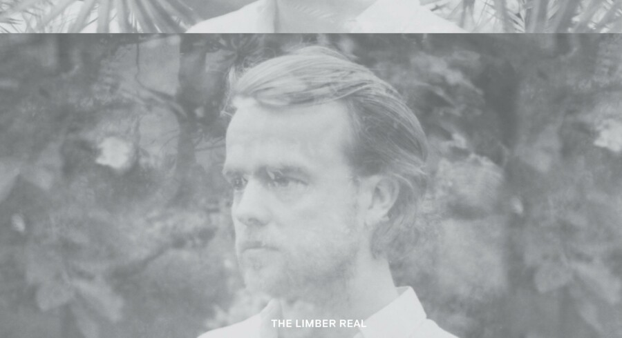 Exec: »The Limber Real«