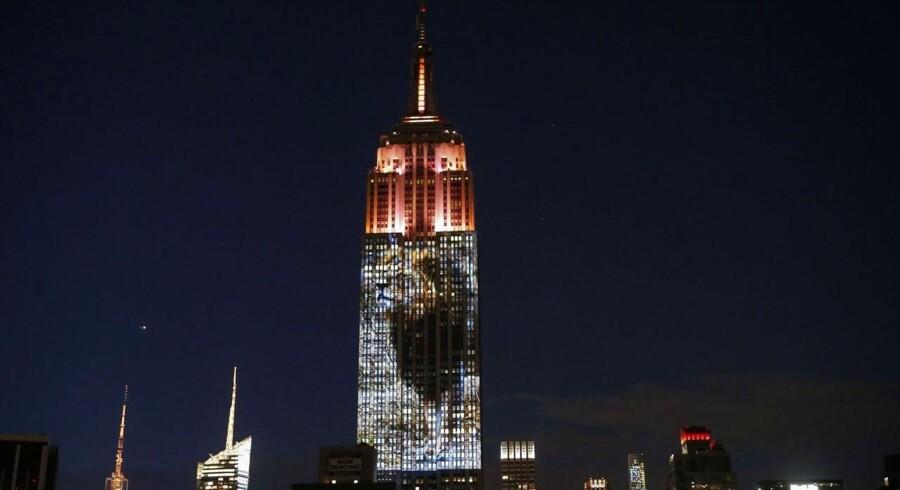 En af New Yorks mest ikoniske bygninger, Empire State Building, blev i går aftes oplyst af billeder af truede dyrearter.