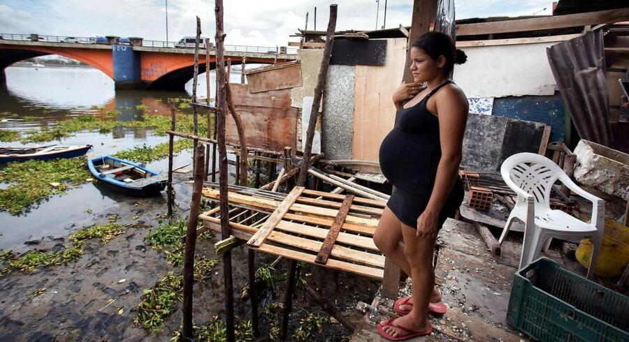 De brasilianske sundhedsmyndigheder advarer kvinder som denne unge kvinde i Recife mod at blive gravide på grund af en nytilkommen virus.