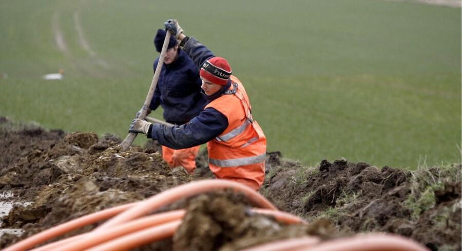 Arkivfoto af nedgravning af bredbånd ved Ringkøbing i 2006.