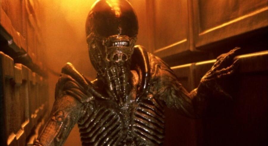 David Fincher, 52, gik fra en lukrativ karriere som reklamefilmsinstruktør for blandt andre Nike og Coca Cola til at blive en af de få instruktører, der har fået lov til at bibeholde og udvikle en distinkt stil i et ellers notorisk kontrollerende studiesystem.1992. »Alien 3«Klik videre for at se flere af David Finchers filmudgivelser.