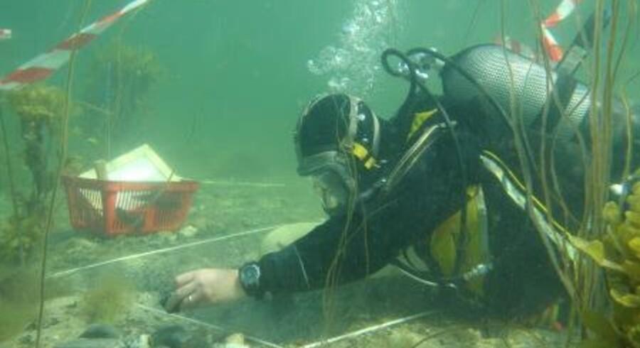 Nationalmuseet har siden 2012 gjort en særlig indsats for bevaring af fortidens levn under vandet.