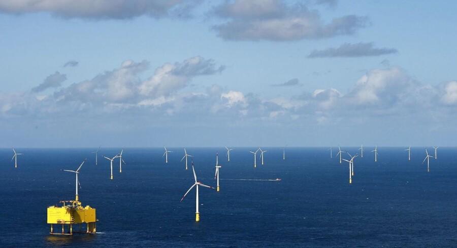 ARKIVFOTO: NKT Cables skal levere og installere eksportkabelsystemerne til havvindmølleparkerne Borssele, Holland.