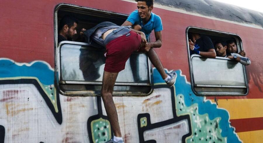 I juli har over 100.000 flygtninge forsøgt at komme ind i EU. Der er brug for, at alle medlemslande træder til, lyder det fra EUs grænseagentur.