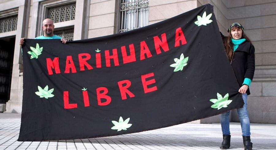 Arkivfoto: Billedet er fra Uruguay, hvor en pro-marihuana demonstration fandt sted foran regeringsbygningen i 2013.