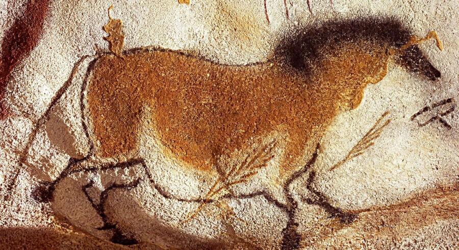 Et omkring 15.000 år gammelt hulemaleri af en hest fra de franske Lascaux-huler.