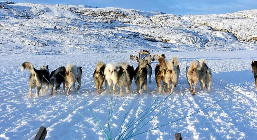 Trafikanter i Grønland kan ikke stole på deres GPS.