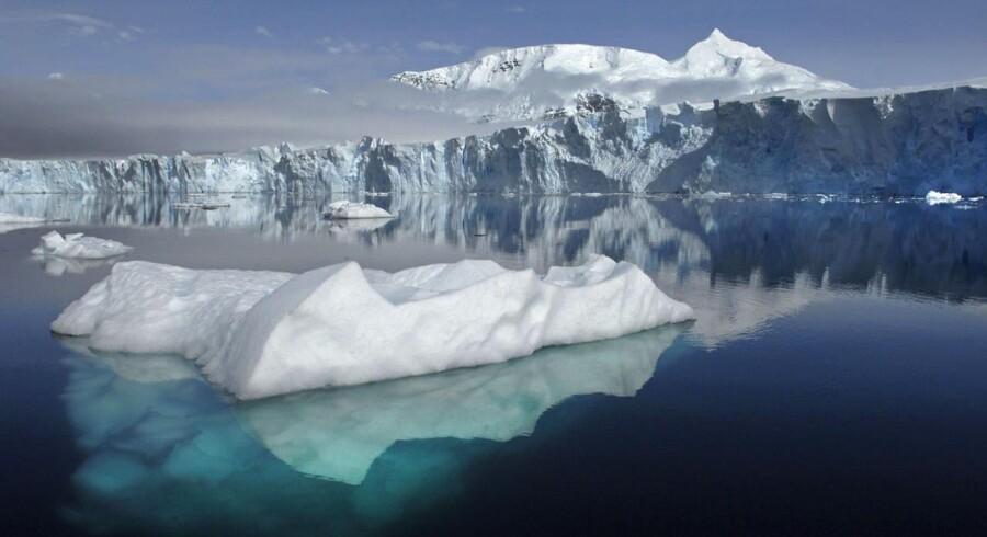 Det er fuldstændig umuligt at forestille sig, at den globale temperatur vil dykke nævneværdigt i de kommende år eller årtier som følge af en let slumrende sol. Dertil er atmosfærens koncentration af drivhusgasser alt for høj – og fortsat kraftigt stigende. Arkivfoto fra Antarktis: Reuters