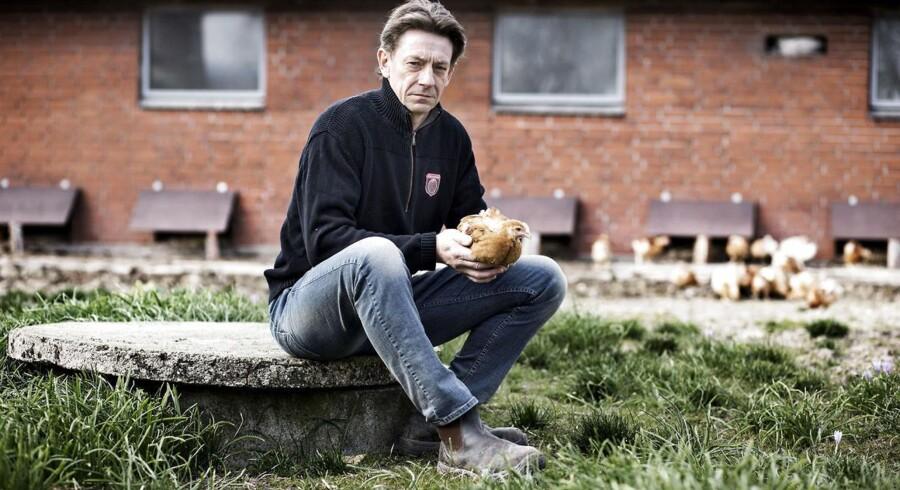 Landmand Morten Højskred Hansen fra Tommerup på Fyn producerer økologiske kyllinger, men kan ikke låne de fem millioner kroner, han har behov for, for at kunne udvide produktionen, så den svarer til efterspørgslen.