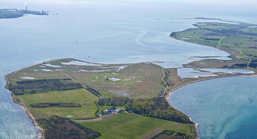 Nu kan du komme til at eje din egen ø. En af Danmarks mange småøer, Egholm, der er særlig kendt for sit dyreliv, er nemlig udbudt til salg. (Foto: Ejendomsmægler Ivan Eltoft Nielsen)