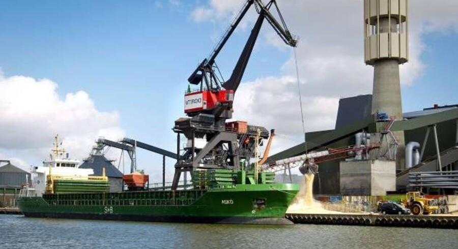Verdi Renewables har fremgang på det britiske marked, hvor den grønne bevidsthed er slået igennem.