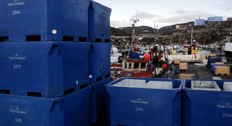Royal Greenlands rejefabrik Ilulissat Havn