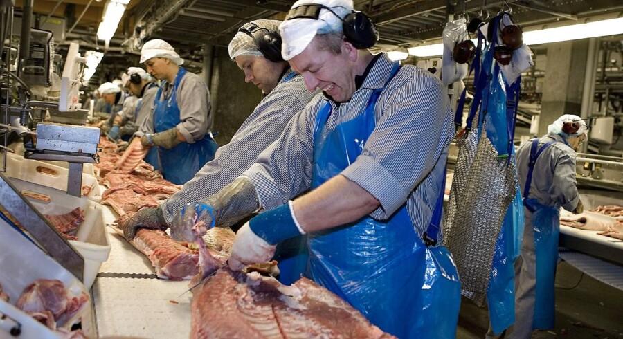 Der var jubel at spore hos slagteriarbejdere hos Tican, efter det lykkedes topchef i Tican, Ove Thejls, at lande en rammeaftale med Tysklands største slagterikoncern, Tønnies.