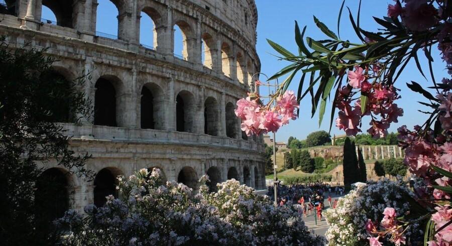 Colosseum i al sin forfaldne pragt. Foto: Camilla Alfthan