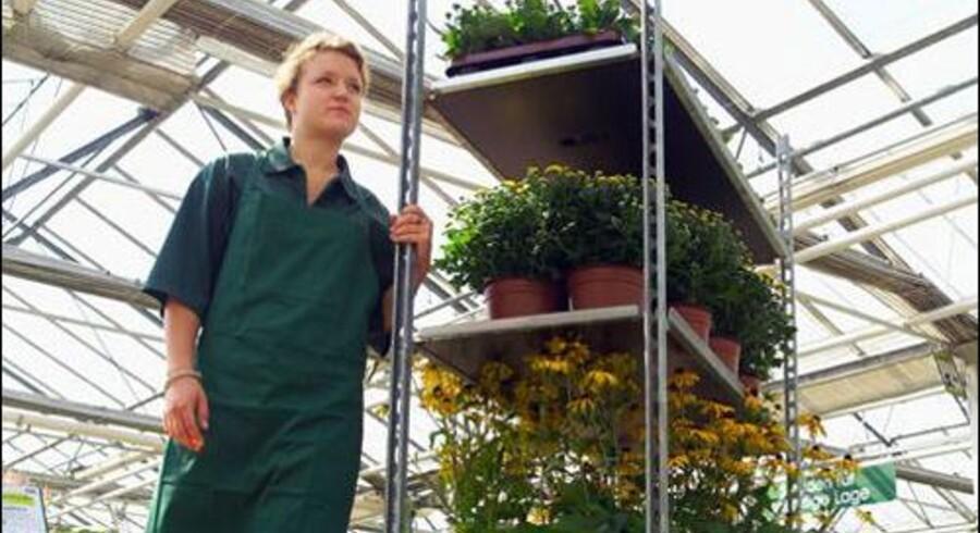 Elektronisk mærkning af plantecontainere har sparet Container Centralen et to-cifret millionbeløb i euro.