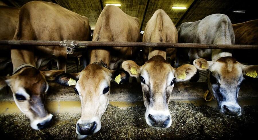 Det bliver nu sværere at sælge kriseramte gårde og landbrug, lyder advarslen. Det sker efter Finanstilsynet har strammet regler for bankernes håndtering af det pressede erhverv.