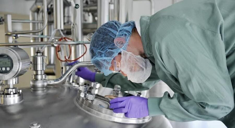 I den franske medicinal-gigant Sanofis pen-fabrik ved Frankfurt forberedes den store insulinkrig, der brager løs i de kommende år.  Foto: Peter Stumpf