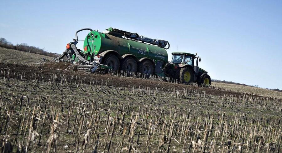 Landbrugets krise blæser ikke over lige foreløbig, vurderer flere eksperter. Foto: Henning Bagger