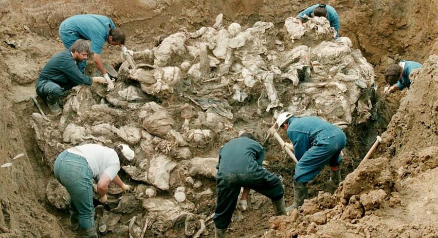 Holland bærer en del af ansvaret for, at flere end 300 bosniakkiske (bosniske muslimer, red.) drenge og mænd blev dræbt under Srebrenicamassakren i Bosnien i 1995. Foto fra massegrav i Pilica.