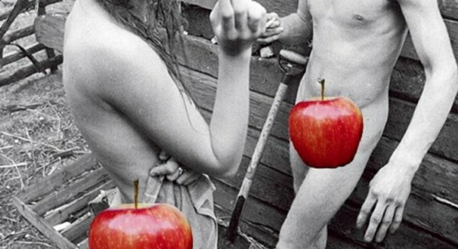 Følgende fotografi er et af de i alt 47 billeder fra Peter Øvig Knudsens bøger om de danske hippier, som Apple har afvist. Efter at forfatteren selvcensurerede med røde æbler, blev bøger dog godkendt af Apples digitale boghandel i ganske få dage. Herefter blev udgivelserne fjernet.
