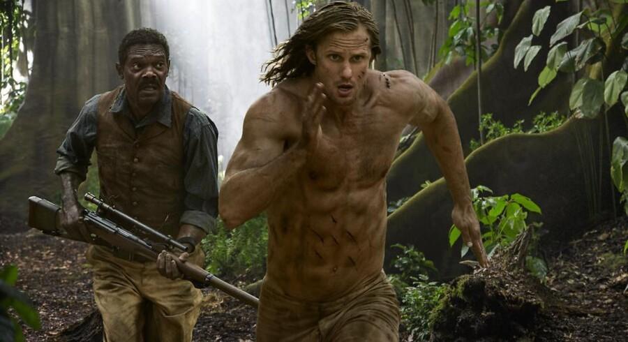Alexander Skarsgårds Tarzan afspejler fitness-alderens ekstremt skaptskårne korpus, hvor overarme, brystkasse og mavemuskler er som et panser. Foto: PR