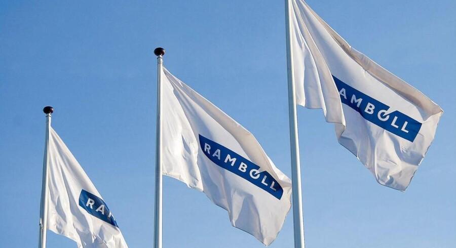 Rambøll øgede omsætningen i 2014 og plantede flaget globalt med en række opkøb. Blandt andet af amerikanske Environ.