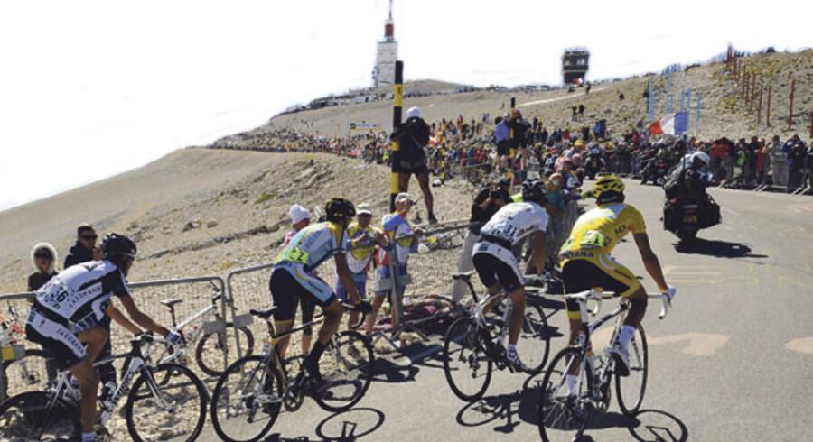 Tour-rytterne kæmper sig op ad »Det skaldede bjerg«. Sådan behøver du heldigvis ikke slide i det på cykelferien i Frankrig.