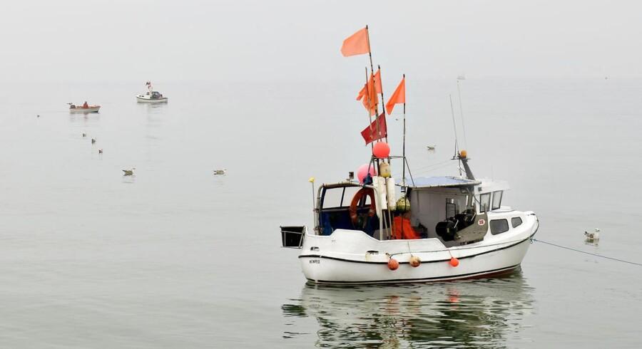 Fødevareminister Dan Jørgensen (S) bliver stærkt kritiseret for den fiskeriaftale for Østersøen, som han på vegne af regeringen har forhandlet hjem og stemplet som en god aftale for dansk fiskeri.