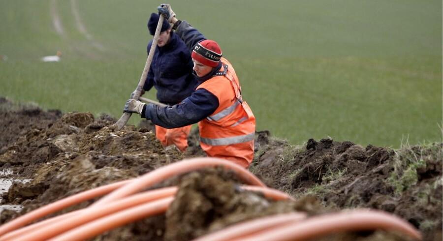 Danske elkunder taber sammenlagt 5,3 milliarder kroner på elselskabernes massive investeringer i bredbånd og fibernet.