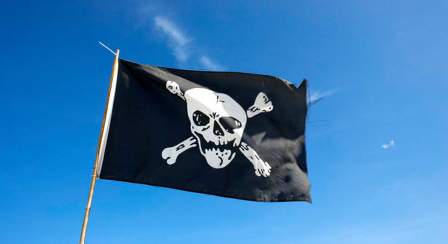 Norsk-svenske Peter Sunde er ikke en populær mand i musik-, film- eller softwarebranchen. Han samler nemlig piraterne.