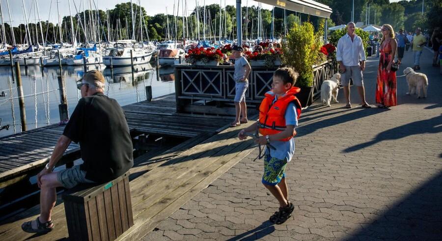 Der er forskel på de promenerende og på sejlerfolket, siger man i Rungsted Havn.