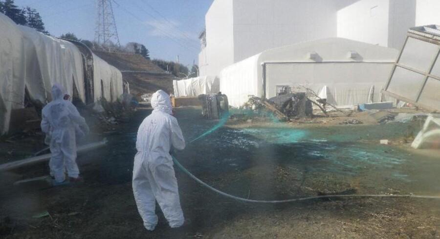 Arbejdere sprøjter et syntetisk stof ud over den radioaktive jord ved Fukushimaværket i Japan.