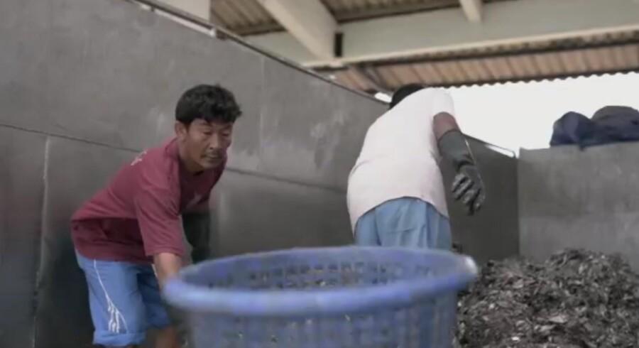 Screenshot fra The Guardians dokumentar om slavearbejderne i Thailand. Billedet er dog fra land, og er ikke optaget på en af slavebådene.