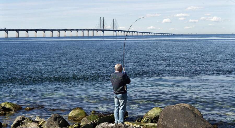 Øresundsbroen på en stille dag med lystfiskere i forgrunden, der fisker ved udsigtspunktet Luftkastellet i Sverige