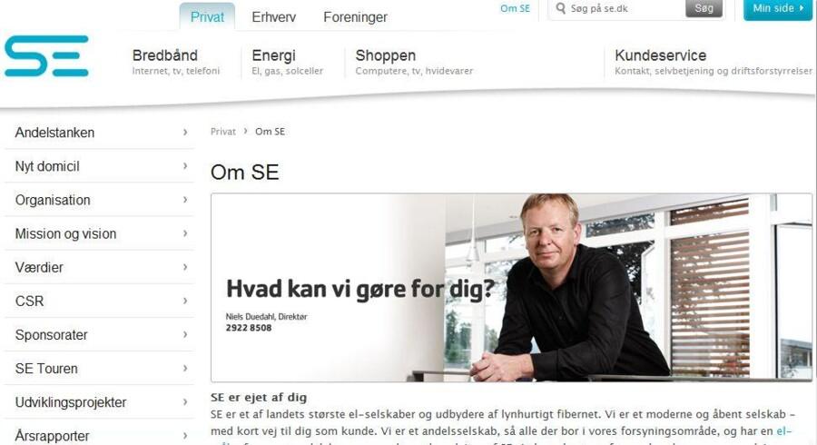 Hvad kan vi gøre for dig? spørger Sydenergis koncernchef Niels Duedahl på Sydenergis netsted. Nu udvider han paletten betragteligt.