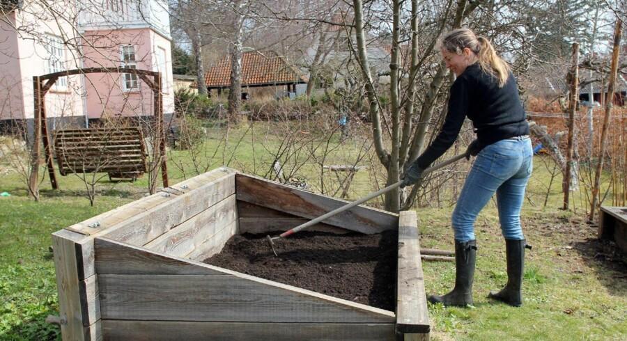 For at bevare den gode jordstruktur i køkkenbedene, skal den tilsatte kompost kun rives let sammen med det øverste jordlag.
