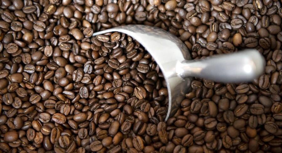 For mange af os er det én af hverdagens uvurderlige fornøjelser at nyde en kop solid, fyldig kaffe. Uanset om det er at trække den i en automat på arbejdspladsen, at tage den på caféen eller at gå til hånde i køkkenet med baristaudstyr i tusindkronersklassen. Arkivfoto.