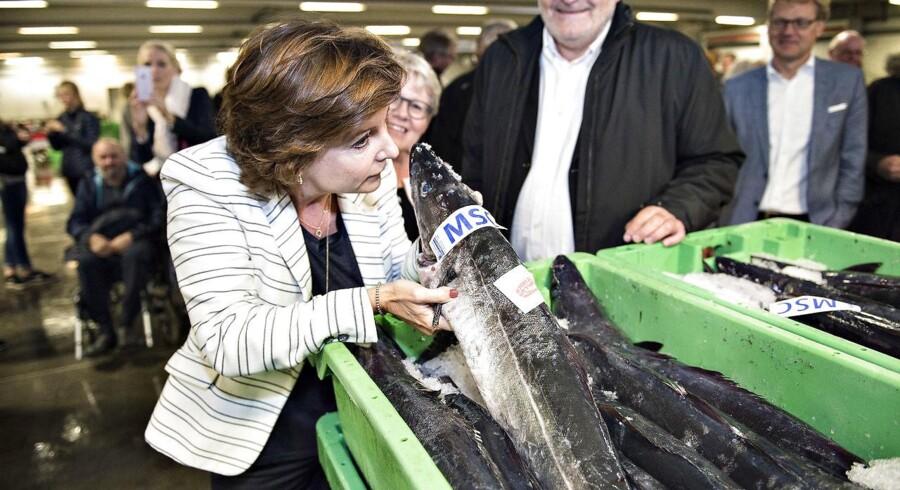Det bliver dyrt for skatteborgerne, at minister for ligestilling og nordisk samarbejde Karen Ellemann også skal være fiskeriminister. Især flytningen af IT-systemer presser prisen op på samlet 27,9 millioner kr. Foto: Henning Bagger/Scanpix