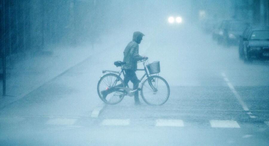 Kraftig regn rammer Danmark fra klokken 16 i dag og frem til nattetimerne. Arkivfoto