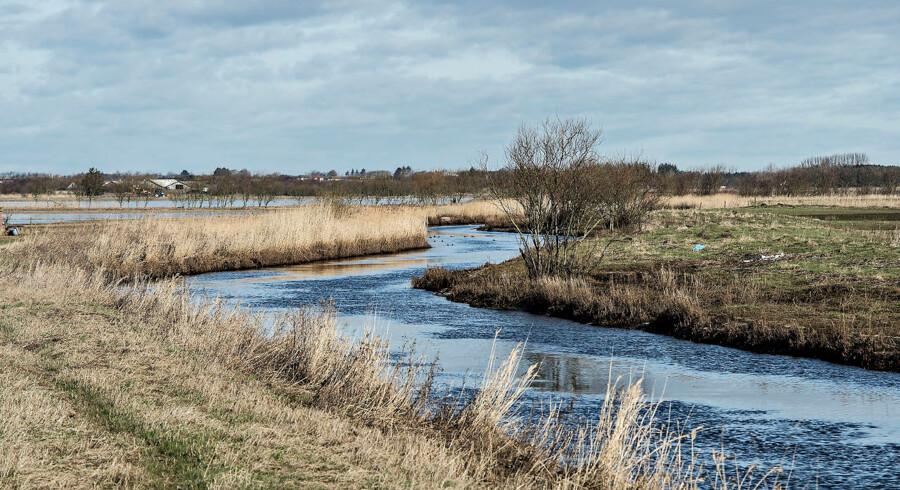 Opgøret om præmisserne bag landbrugspakken fortsætter. Nye oplysninger tyder på, at miljøtilstanden i danske fjorde og åer reelt er værre pga. en problematisk målemetode.