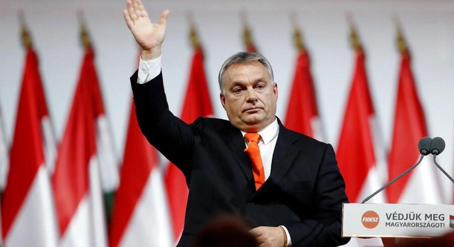 Premierminister Viktor Orbán og hans konservative parti, Fidesz, har sat sig totalt på magten i Ungarn. Nu er han klar til at gå i lag med den liberale indstilling i EU – som Ungarn er et meget kritisk medlem af. Arkivfoto: Laszlo Balogh/Reuters