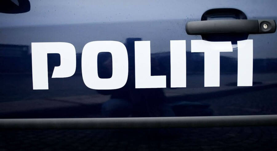En dværgkaiman stak søndag af fra sin ejer på Bornholm. Mandag er den fanget igen, oplyser politiet. Free/Pressefoto Rigspolitiet