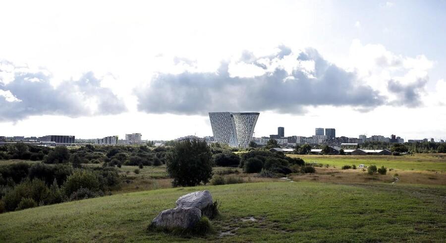 Amager Fælled med Bella Sky i baggrunden.. (Foto: Liselotte Sabroe/Scanpix 2017)