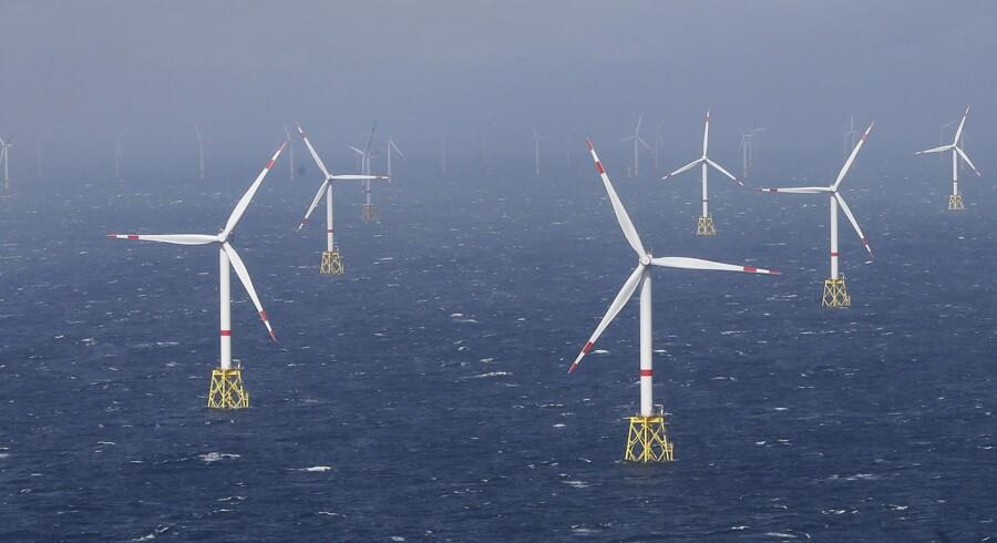 Det er særligt eksportører af vindmølleteknologi, der kan blive berørt af, at der er kommet en ny præsident i Det Hvide Hus. Reuters/Morris Mac Matzen