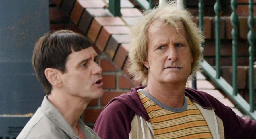 Jim Carrey og Jeff Daniels i Dum, Dummere 2.