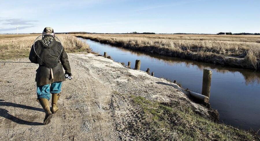 Lystfisker på vej hjem fra Ryå nær Saltum i Vendsyssel. Omstridt landbrugspakke er igen til debat. Forsker sår tvivl om beregning for kvælstofudledning. Landbrug erkender usikkerhed. Esben Lunde har nu været i hastesamråd.